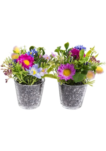 Botanic-Haus Kunstblume »Frühlingsarrangement im Glas« kaufen