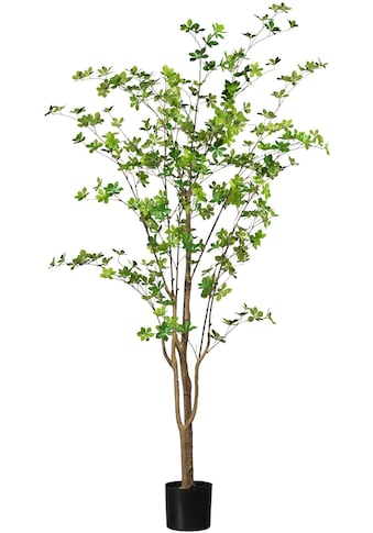 Creativ green Kunstbaum »Louisiana-Baum« kaufen