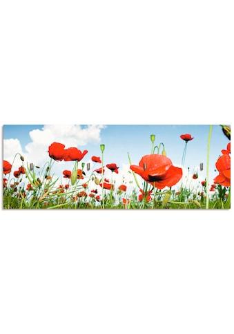 Artland Schlüsselbrett »Feld mit Mohnblumen unter Himmel«, aus Holz mit 4... kaufen