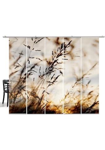emotion textiles Schiebegardine »Grasland big«, HxB: 260x60, mit Befestigungszubehör kaufen