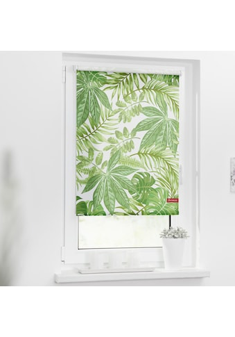 LICHTBLICK Seitenzugrollo »Rollo Klemmfix, ohne Bohren, blickdicht, Blätter - Grün«,... kaufen