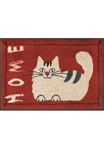 wash+dry by Kleen-Tex Fussmatte »Catty Home«, rechteckig, 7 mm Höhe, Schmutzfangmatte,... kaufen