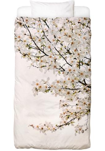 Juniqe Bettwäsche »Magnolia White«, In vielen weiteren Designs erhältlich kaufen