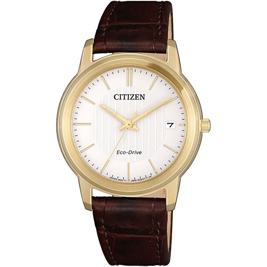 Citizen Solaruhr »FE6012-11A«