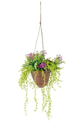 Kunstpflanze »Hängeampel« kaufen