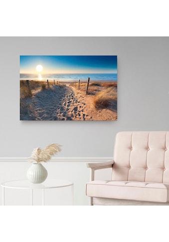 Reinders! Holzbild »Deco Panel 60x90 Dune Path« kaufen