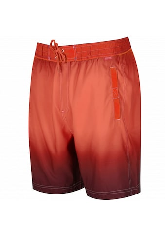 Regatta Boardshorts »Great Outdoors Herren Hadden Board Shorts« kaufen