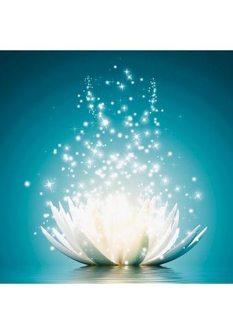 Premium collection by Home affaire Bild »V. Georgiev: Magie der Lotus - Blume« kaufen