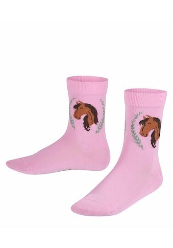FALKE Socken Horse (1 Paar) kaufen