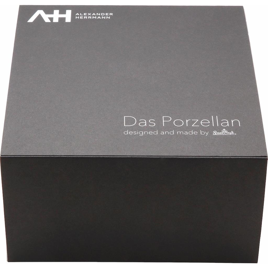 Alexander Herrmann Kombiservice »MIX«, (Set, 10 tlg.), Spülmaschinenfest