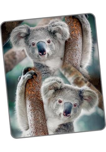 Wohndecke »Koala«, good morning kaufen