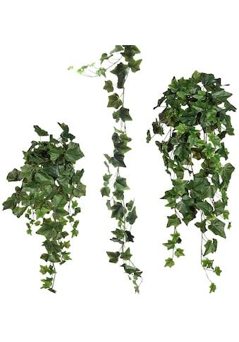 Creativ green Kunstranke »Efeugirlande« kaufen
