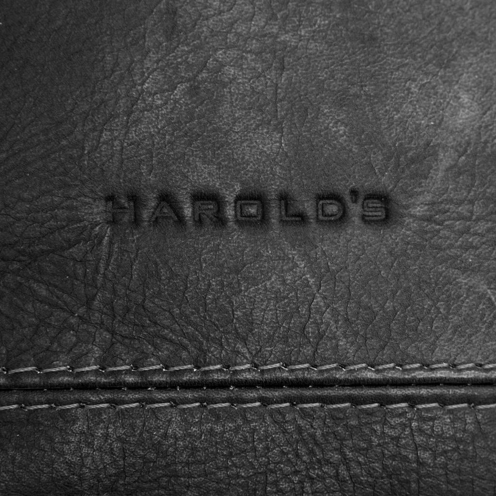 Harold's Tagesrucksack »CAMPO«, vegetabil gegerbt
