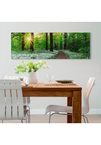 Reinders! Holzbild »Deco Panel 52x156 Spring Forest« kaufen