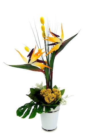 Kunstpflanze »Strelitziengesteck in Topf« (1 Stück) kaufen