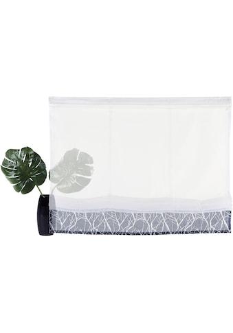 Raffrollo »Camposa«, my home, mit Klettband kaufen