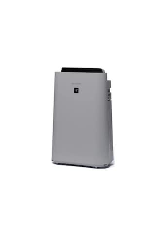 Sharp Luftreiniger »Sharp Luftreiniger UA-HD40E-L 26 m²«, für 26 m² Räume,... kaufen