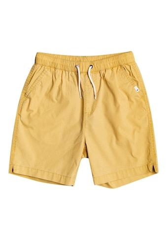 Quiksilver Shorts »Taxer« kaufen