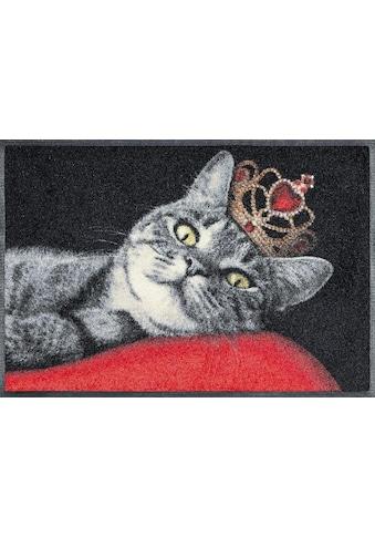 wash+dry by Kleen-Tex Fussmatte »Royal Cat«, rechteckig, 7 mm Höhe, Schmutzfangmatte,... kaufen