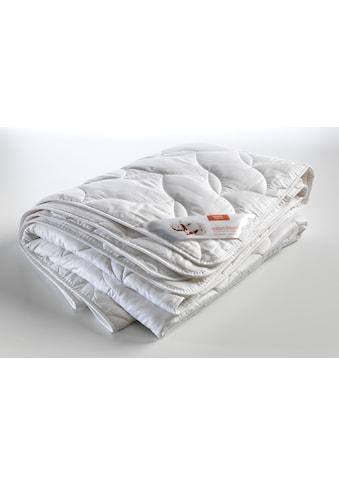 Kyburz Einziehdecke »Ranke«, Füllung 100% Baumwoll Flies, Bezug 100%... kaufen