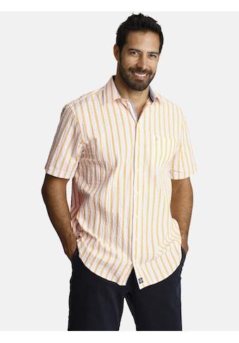 Jan Vanderstorm Streifenhemd »DEACON«, luftiges Sommerhemd kaufen