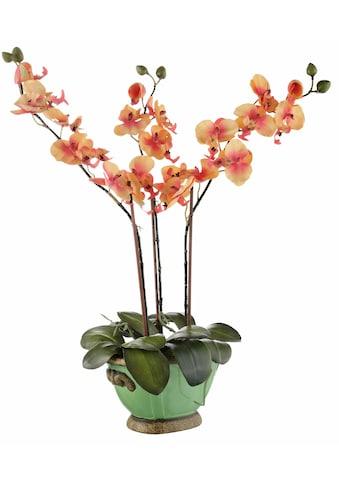 Home affaire Kunstpflanze »Orchidee« (1 Stück) kaufen