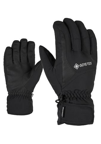 Ziener Skihandschuhe »GARWEN GTX« kaufen