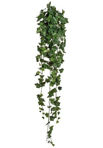 Creativ green Kunstranke »Efeuhänger« kaufen