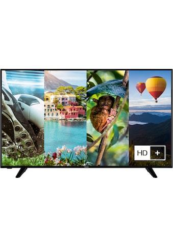 """Hanseatic LED-Fernseher »55H600UDS II«, 139 cm/55 """", 4K Ultra HD, Smart-TV, HDR10, Gratis: 6 Monate HD+ im Wert von 34,50 kaufen"""