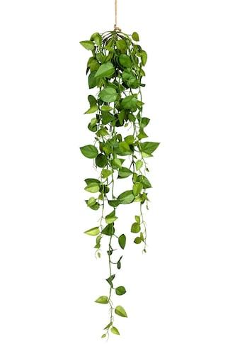 Creativ green Kunstranke »Philodendron-Hängezopf« kaufen
