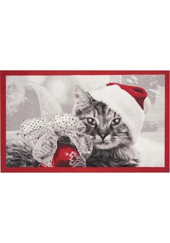HANSE Home Fussmatte »Christmas Cat«, rechteckig, 7 mm Höhe, Fussabstreifer,... kaufen