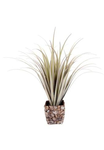 I.GE.A. Kunstgras »Gras«, Mit Übertopf kaufen