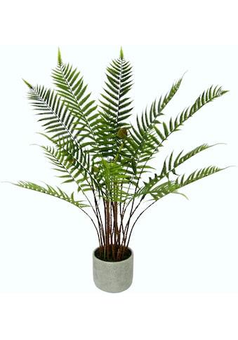 Kunstpflanze »Waldfarn« (1 Stück) kaufen
