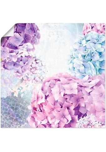 Artland Wandbild »Blau und Pink Hortensie«, Blumen, (1 St.), in vielen Grössen &... kaufen