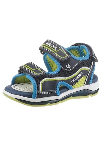Geox Kids Sandale »Todo Boy Blinkschuh«, mit 3 Klettverschlüssen kaufen