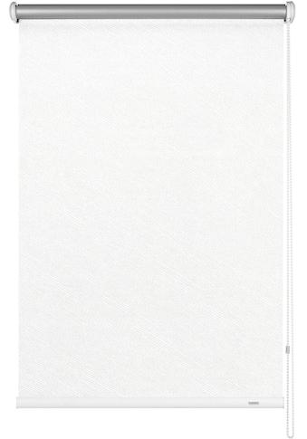 GARDINIA Seitenzugrollo »Uni-Rollo - Thermo Energiesparend«, verdunkelnd,... kaufen