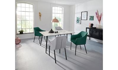 INOSIGN Esstisch »Tegan«, mit einem Metallgestell, in verschiedenen Tischgrössen, mit... kaufen