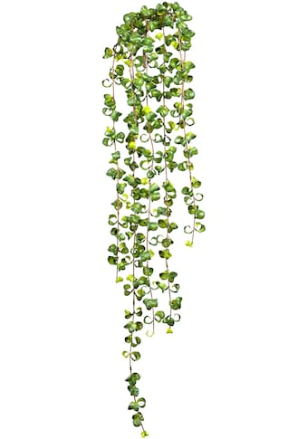 Creativ green Kunstranke »Ficus Barock Blatthänger« kaufen