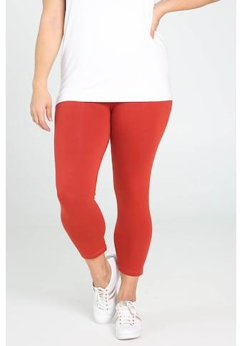 Paprika Leggings »Uniform Gummizug in der Taille casual« kaufen