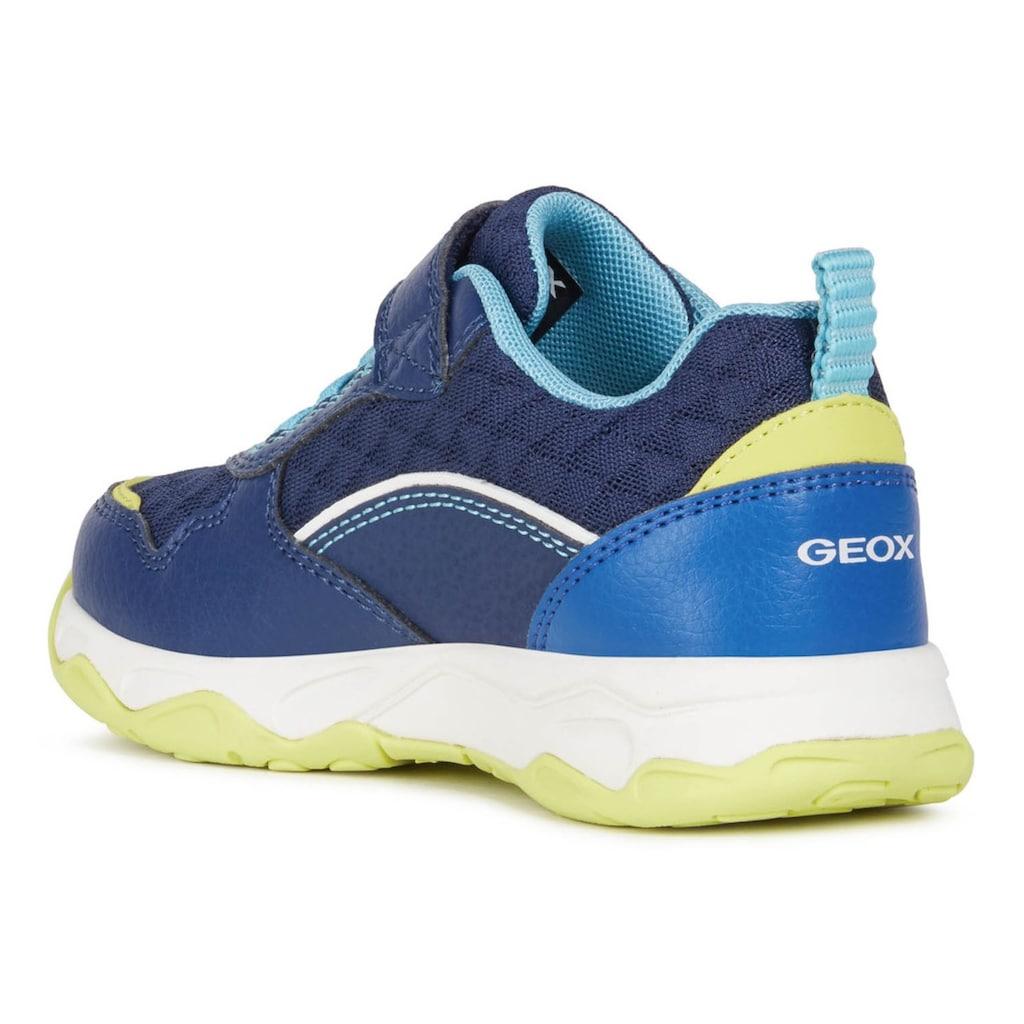 Geox Kids Sneaker »CALCO BOY«, mit Klettverschluss und Gummizug