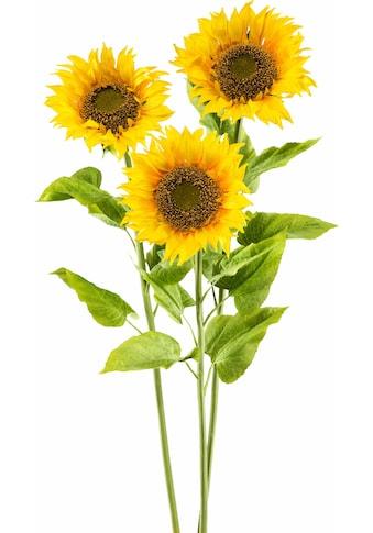 Creativ green Kunstblume »XL« kaufen