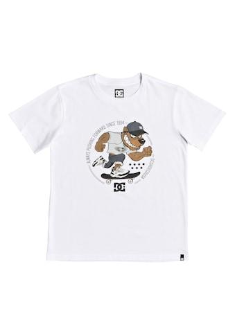 DC Shoes T - Shirt »Pitbowl« kaufen