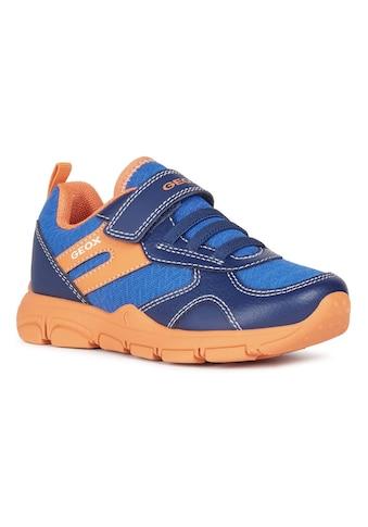 Geox Kids Sneaker »NEW TORQUE BOY«, mit herausnehmbarer Innensohle kaufen