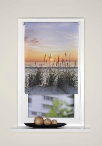 HOME WOHNIDEEN Raffrollo »EVENING«, mit Hakenaufhängung, ohne Bohren, freihängend, Kettenzugrollo, digital bedruckt kaufen