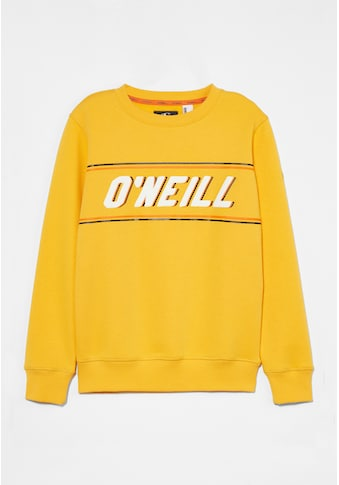 "O'Neill Sweatshirt »""Sweatshirt""« kaufen"