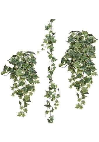 Creativ green Kunstpflanze »Efeugirlande« (Set, 3 Stück) kaufen