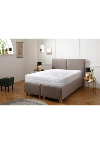 DELAVITA Komfortschaummatratze »Wismar«, (1 St.), Extra hoher Matratzenkern mit fester... kaufen